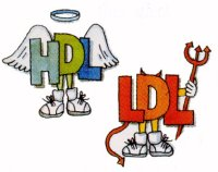 HDL or LDL