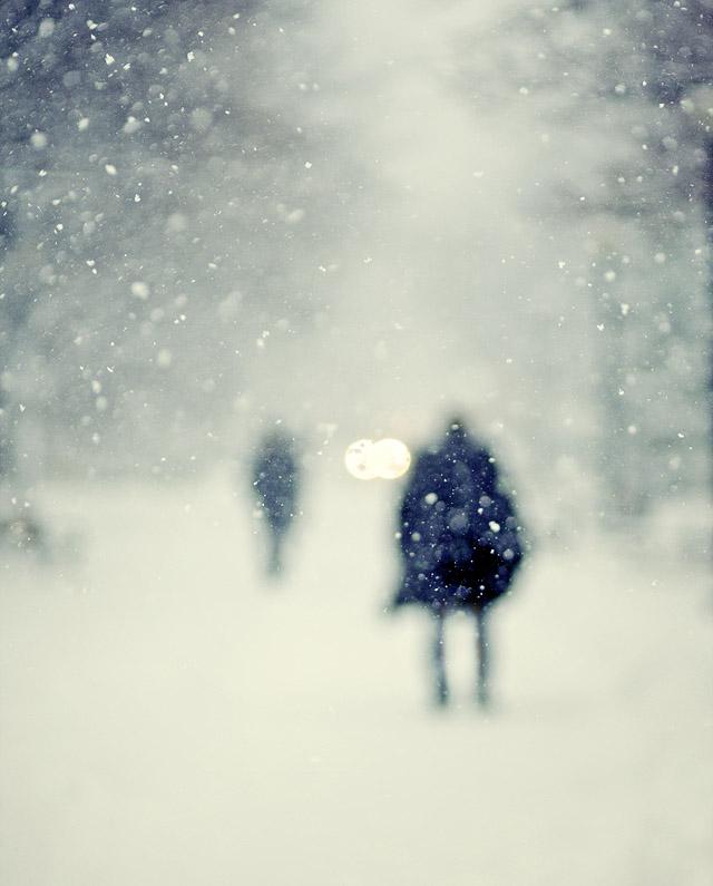 snowstormcity