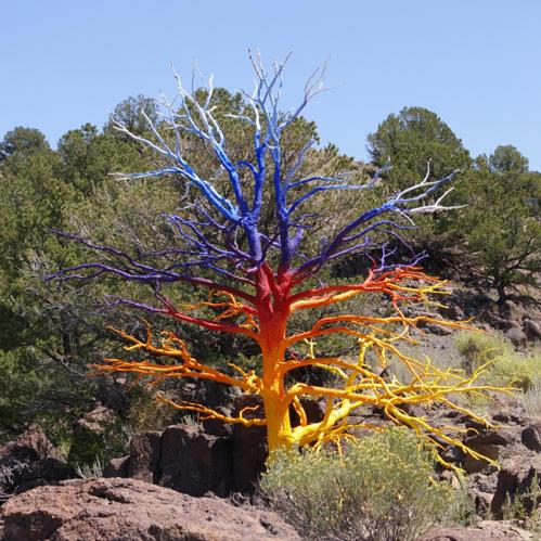Curtis Killorn painted tree