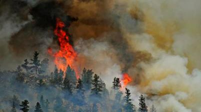 Hewlett Gulch fire. THE DENVER POST | RJ Sangosti