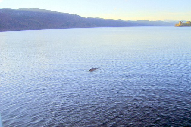 loch ness muslim New theory on loch ness monster proving or disproving the existence of the loch ness monster has been one of britain's more popular blue muslim wave.