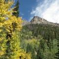 Aspen color
