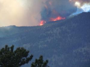 The Fern Lake Fire (Photo: Margaret Jensen)