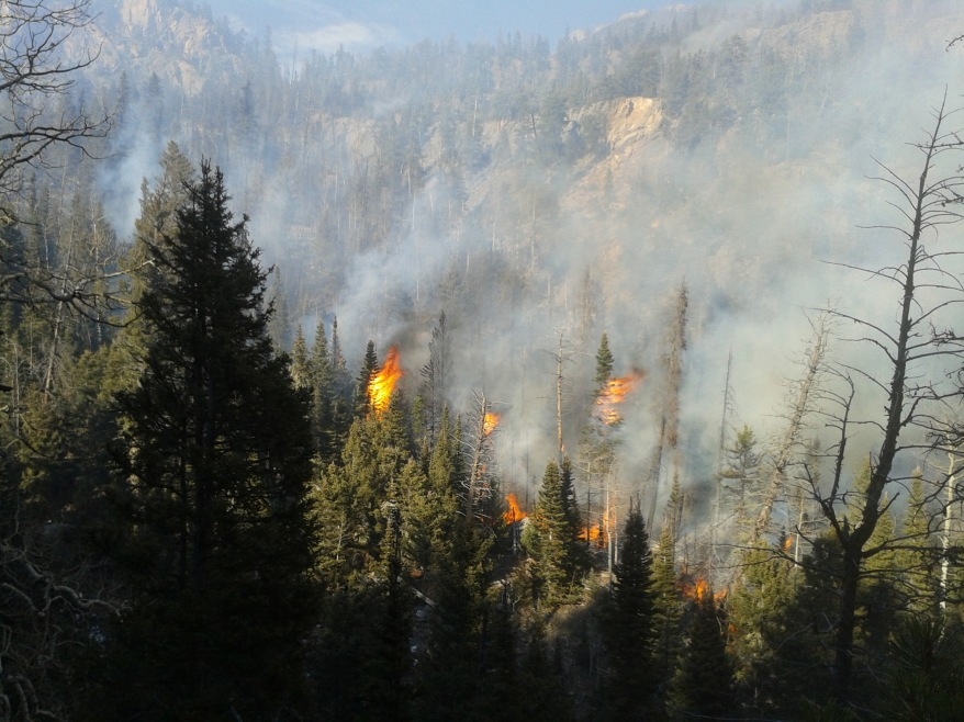 A fire smoldering in Rocky Mountain National Park just west of Estes Park has flared up and started moving again.