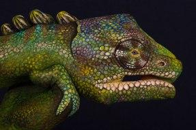 GuidoDaniele-chameleon