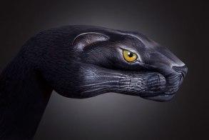 GuidoDaniele-panther