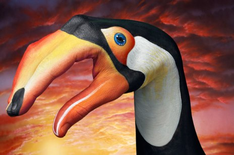 GuidoDaniele-toucan-on-sky