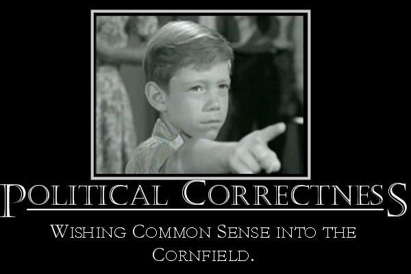 Political correctness gone too far essay writer