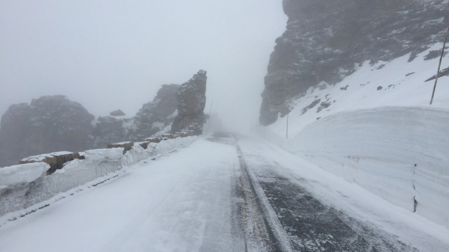 Rock Cut, Trail Ridge Road (Photo courtesy RMNP)