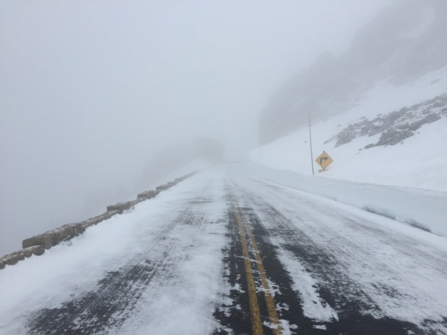 Rock Cut, Trail Ridge Road (Photo courtesy RMNP)