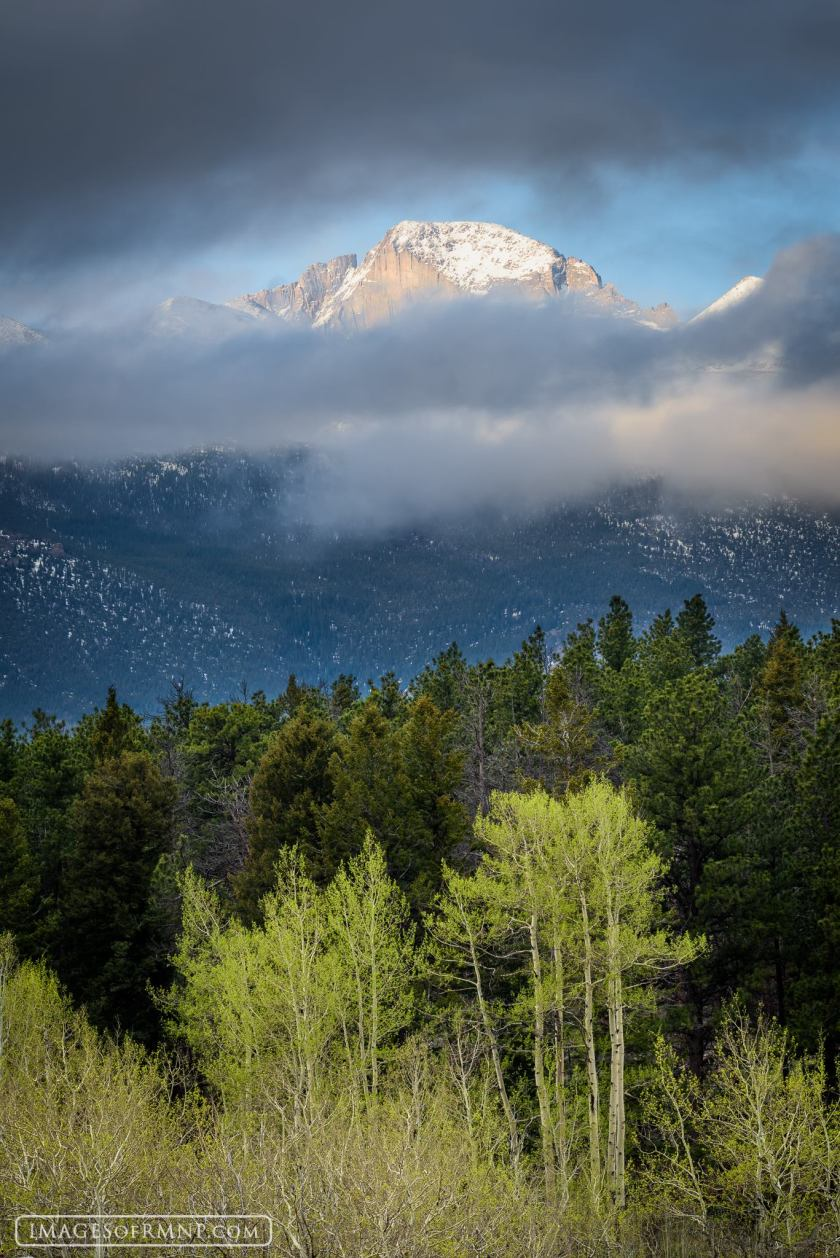 "Early summer morn, Longs Peak. Copyright Erik Stensland, <a href=""http://imagesofrmnp.com/"">ImagesofRMNP.com</a>. Published with permission."