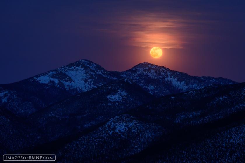 """Moonlight Surprise"" by Erik Stensland"