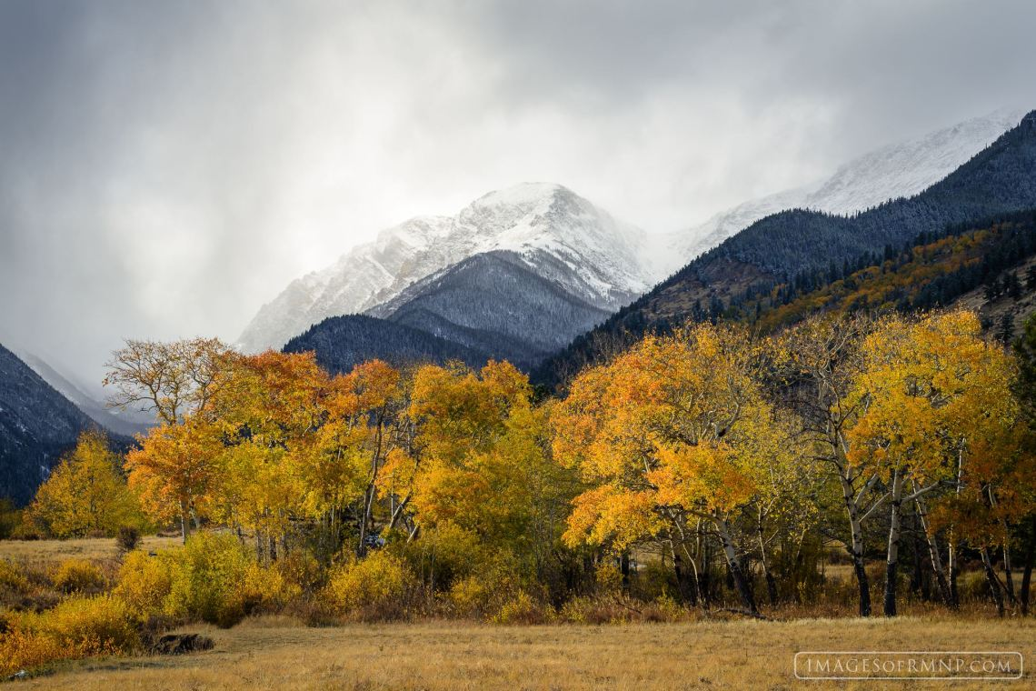 Mount Chapin. © Erik Stensland. Published with permission.