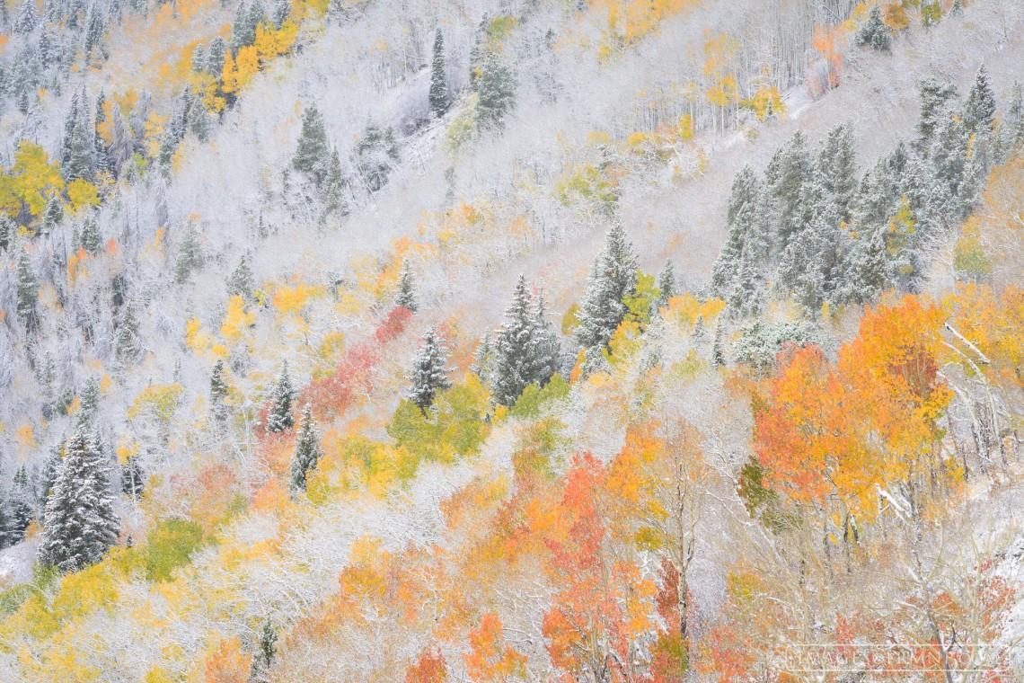 """""""Autumn Pastels."""" © Erik Stensland. Published with permission."""