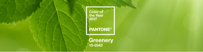 pantone_color_of_the_year_2017_shop_banner