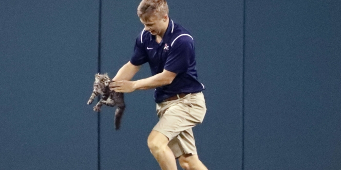 Intrepid groundskeeper Lucas Hackmann with very unhappy cat