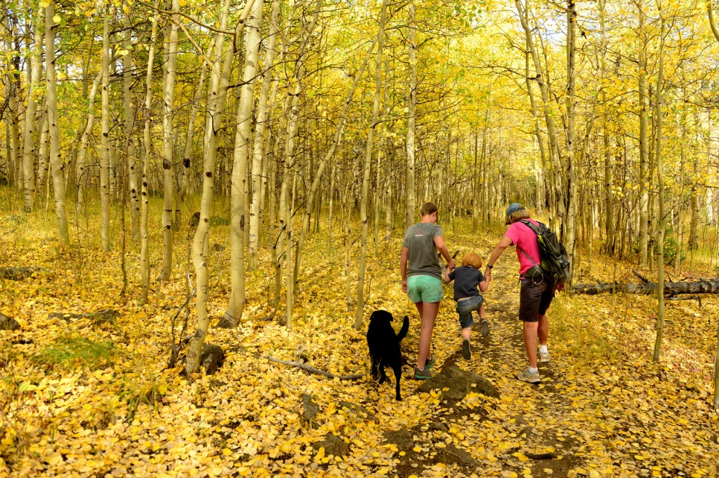 Loren Duggan, left, and her mother Lee Tillotson, right, walk with Duggan's son Odin, 3, and their dog Karli among the quickly changing aspen trees along the Switzerland Trail on September 18, 2018 near Nederland, Colorado. (Helen H. Richardson, The Denver Post)