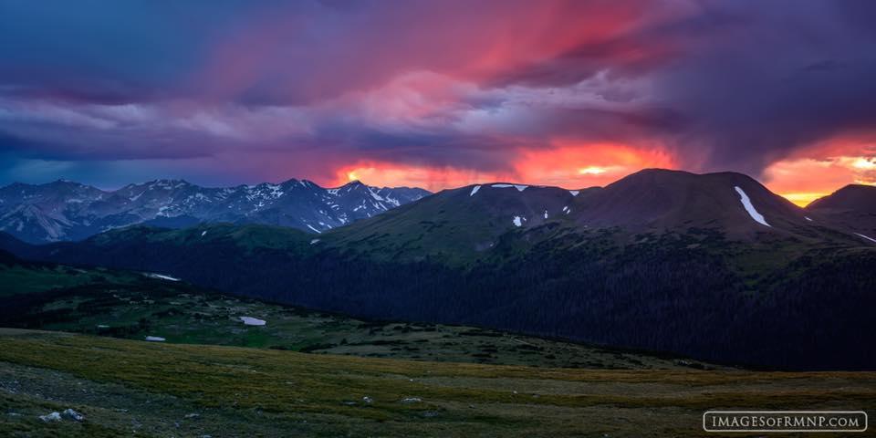 Untitled view from Trail Ridge Road. © Erik Stensland.