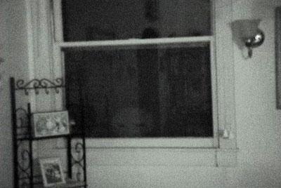"Peckman's ""alien"" peeks in over lower edge of window"